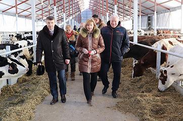 На Дону построен новый молочно-товарный комплекс
