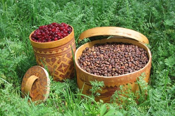 Югра отправит за рубеж лесную пищевую продукцию