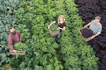 Яков Любоведский: Россия может стать мировым лидером рынка органических продуктов