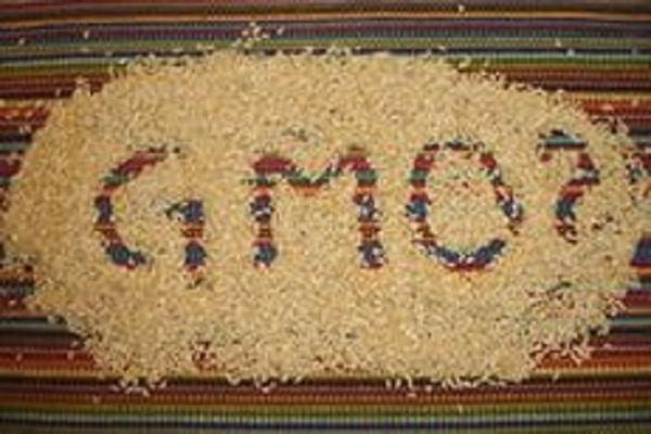 Госдума официально запретила использование в России ГМО