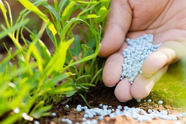 В Германии из-за нитратов изменят правила внесения удобрений