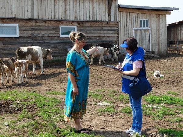 В России проведут сельскохозяйственную микроперепись
