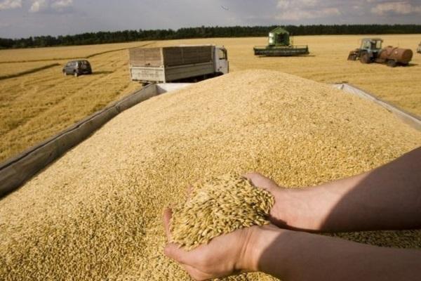 Смена правительства в Монголии угрожает поставкам сибирского зерна