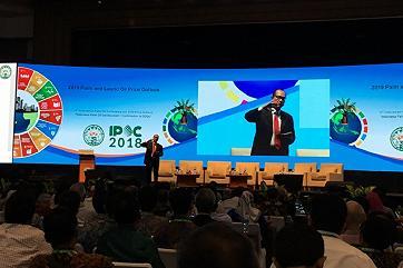 Индонезия резко повысит производительность пальмовых плантаций