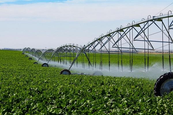 Волгоградские аграрии получат 650 млн на мелиорацию