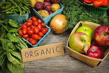Как сертифицируется органическое производство: памятка для производителей