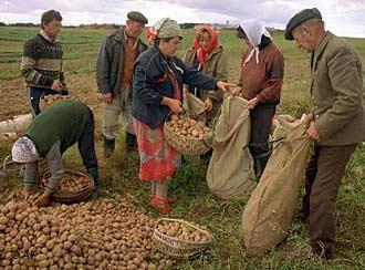 В Беларуси проходят самые масштабные за 20 лет реформы в АПК