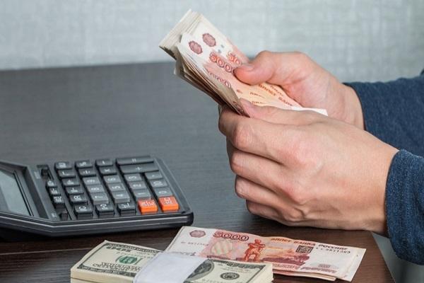 Госдума выступила за патентную систему налогов в АПК