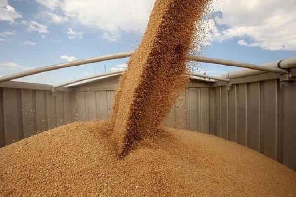 РЗС назвал возможный объем поставок зерна в Турцию до конца сезона