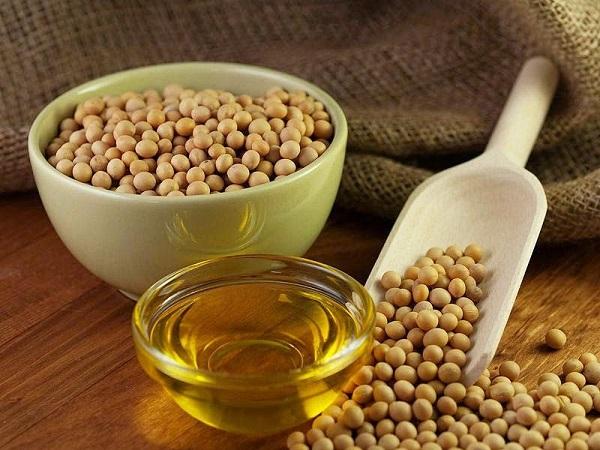 Бразилия хочет поставлять в КНР продукцию переработки масличных