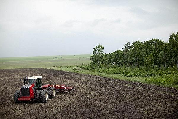 В России пустует почти 100 млн. гектар сельхозземель